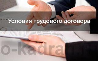 Трудовой договор: понятие, условия, заключение