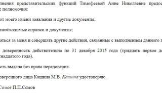 Доверенность по административным делам в суде — готовый бланк и образец документа