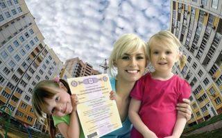 Выделение долей детям при использовании материнского капитала: порядок, документы, сроки, стоимость — как выделить доли детям в квартире, купленную на материнский капитал 2021