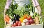 Можно ли продать излишки урожая без оформления ип?