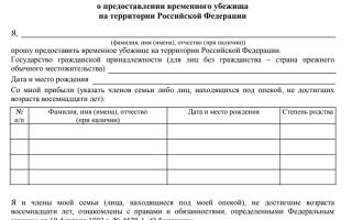 Временное убежище в РФ — как получить статус, какие права дает