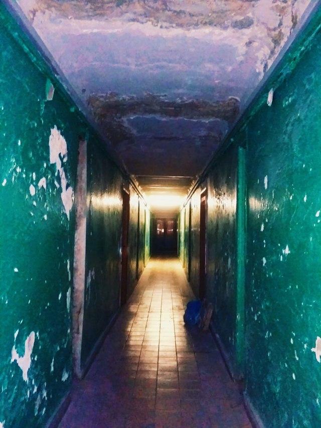 Как получить комнату в общежитии института по закону?