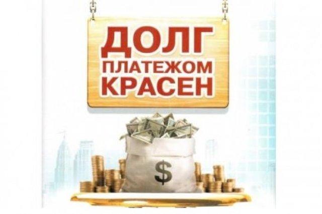 Как взыскивают долг по членским взносам в СНТ?