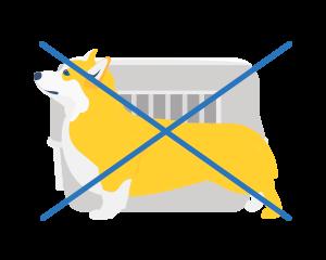 Можно ли перевозить собак в салоне самолета пассажиру?