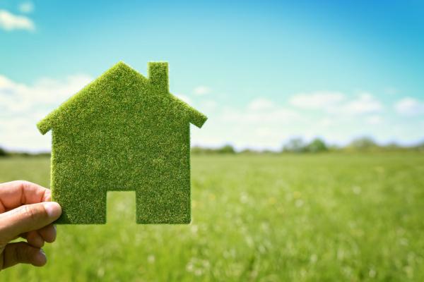 Как правильно взять землю в аренду у государства?