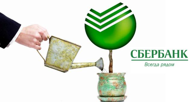 Компенсация вкладов Сбербанка до 1991 года - что это, условия выплаты