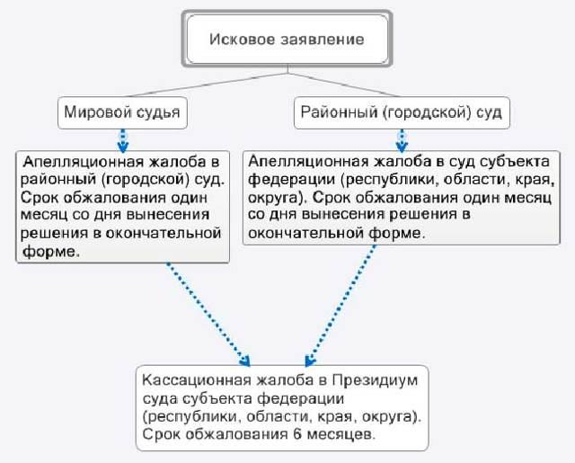 Апелляционная жалоба на решение суда: образец, пример, бланк