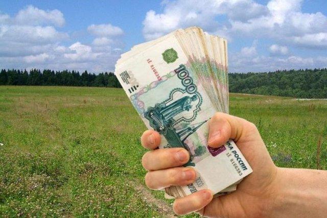 Многодетным семьям вместо земли могут выдавать деньги или нет: деньги вместо земельного участка в 2021 году, как получить вместо участка выплаты и кому не предназначены деньги