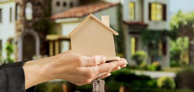 Приватизация земельного участка - кто имеет право на бесплатную и платную, описание процедуры и стоимость